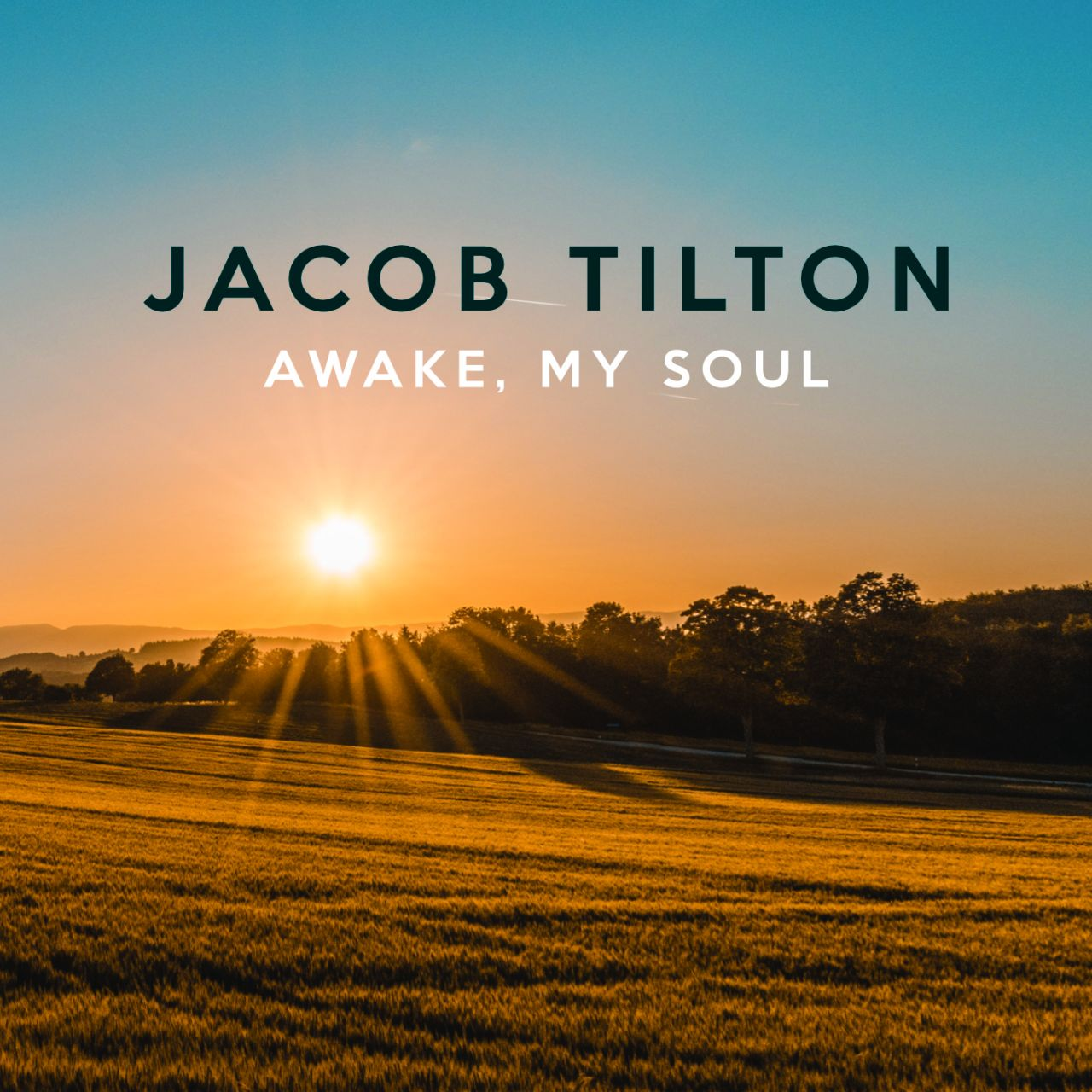 Digital Cover 1400